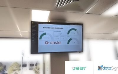 Helping Anstel Brands nail goal tracking, team target visibility and data availability – a DEAR Inventory story