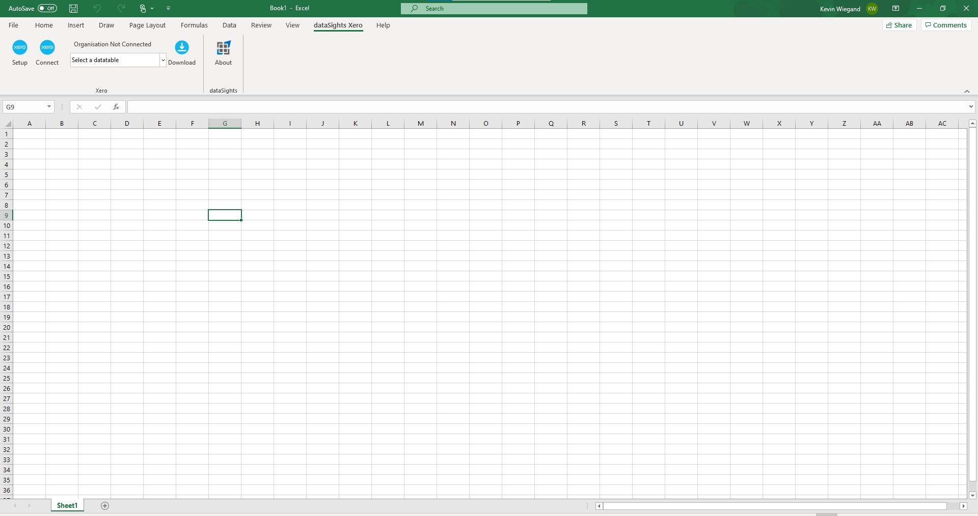 dataSights builds custom Excel Add Ins